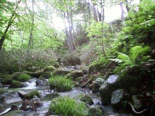 一之瀬の川