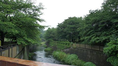 祖師谷公園の仙川