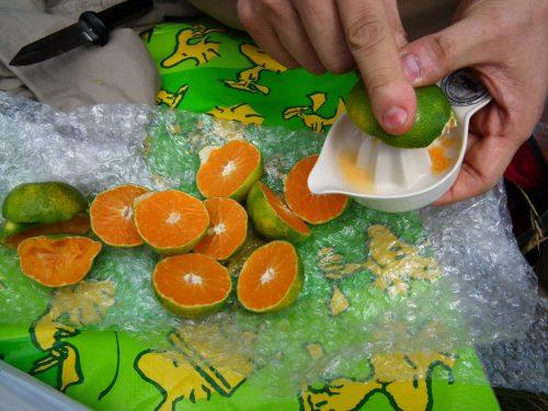 山頂ではオレンジジュース