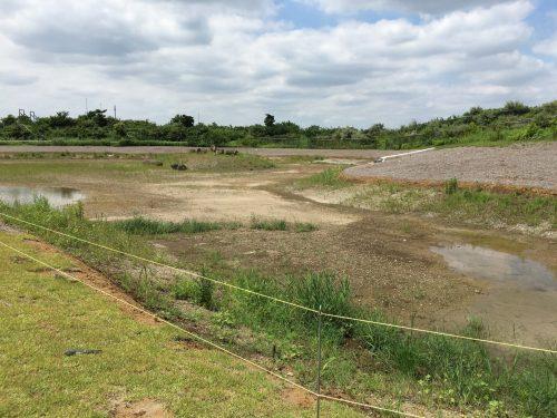 池は建設中